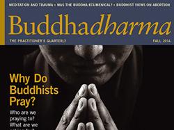 buddhadharma-journal